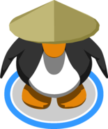 Bamboo Hat in-game