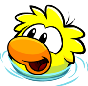 Swimming Duckle