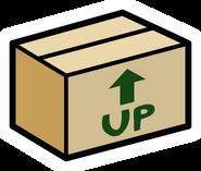 Pin de Caja de Cartón en