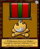 Mission 2 Medal full award