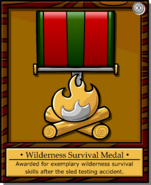 Mission 2 Medal full award