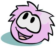 Puffle Rosa 5