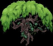 Ancient Tree 1