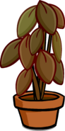Large House Plant sprite 002