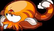Cat Puffle Rolling around