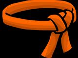 Orange Ninja Belt
