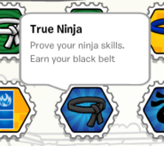 True ninja stamp book