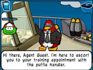 JPG escort