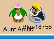 Blue-auntarctic