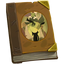 Quest item Journal icon