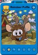 ReindeerPuffle