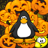 Jack O Lantern Background Playercard