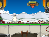 EPF Rooftop