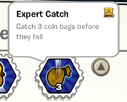 Expert catch stamp book