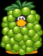 GreenGrapeCostumePlayercard