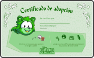 15.Mapache Verde