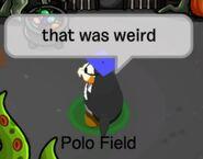 Polo Field: Eso fue raro