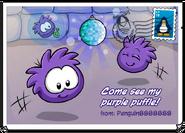 PurplePufflePostcard