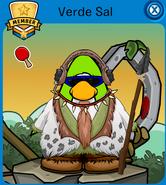 Verdesal12