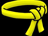 Yellow Ninja Belt