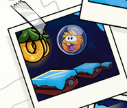 OrangePufflePufflescapePic
