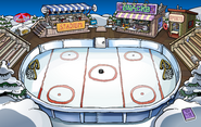 Ice Rink 2010