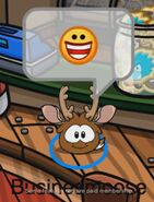 Businesmoose sonriendo transformado en Puffle Reno