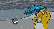 Raingearblog