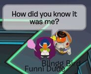 Funni Dude: ¿Cómo sabias que era yo?