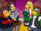 Penguin Band Background