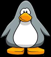 Grey Penguin2223