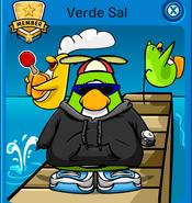Verdesal1