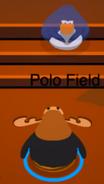 Polo Bow