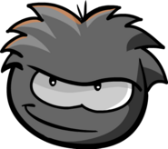 Puffle Negro 41