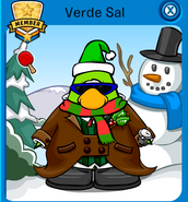Verdesal6
