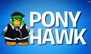 Pony Hawk Rap