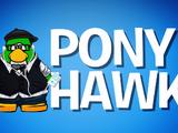 Pony Hawk
