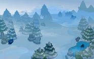 Bosque Neblinoso-0
