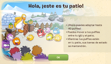 Patio-1389375949