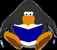 A Blue Book