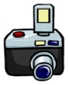 Camera pin