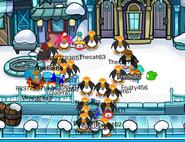 Cp clones
