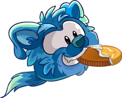 Blue Border Collie eating Chocolate Coin