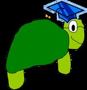 Nerd Turtle