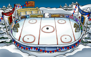 Sports Party Ice Rink