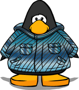 Blue Winter Jacket on Player Card