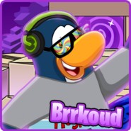 Brrkoud icon