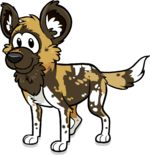 Cp African Painted Dog