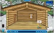 Maple iglú