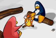 Cove Campfire